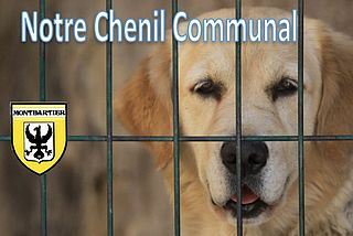 chenil demenage