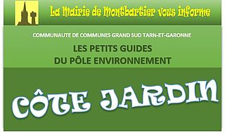Petits guides